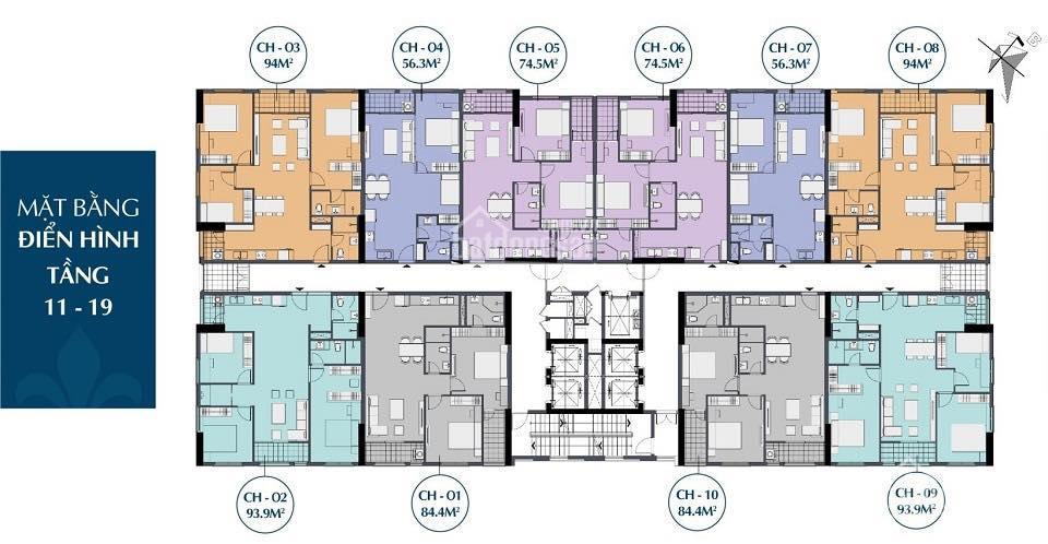 Mặt bằng điển hình tầng 11 - 19 chung cư 27 Thái Thịnh - Le Capitole