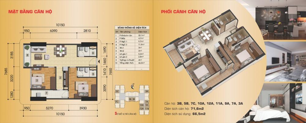 Thiết kế căn hộ 3B, 5B, 7C, 10A, 12A, 11A, 9A, 7A, 3A
