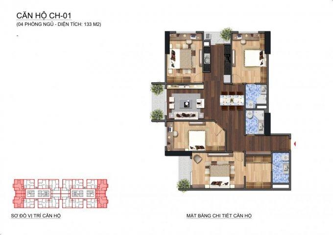 Thiết kế căn hộ CH1