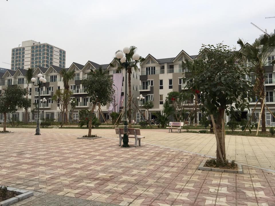 Khuôn viên cây xanh liền kề A10 Nam Trung Yên