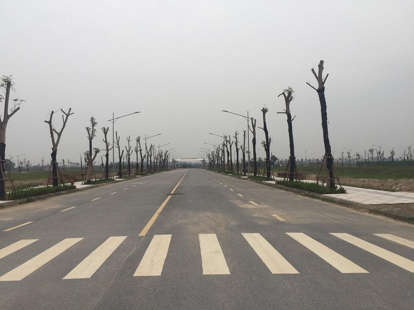 Liền kề Hud Mê Linh Central