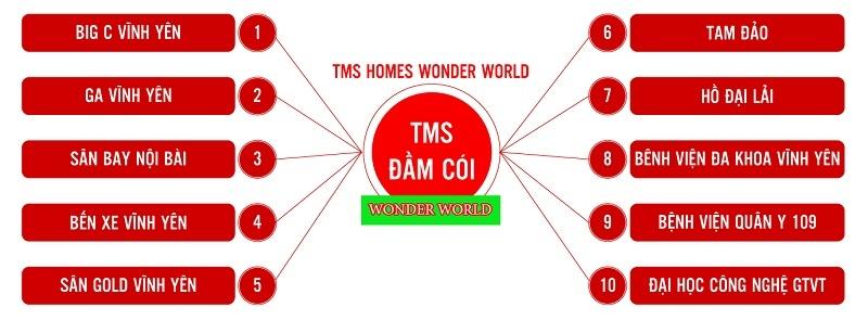 Kết nối TMS Wonder World Đầm Cói Vĩnh Yên